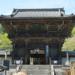 長谷寺の縁結びお守りのご利益が高い理由とは?奈良の紫陽花の見頃はいつ?